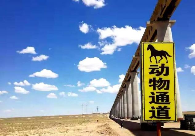 【优行·国旅】走马观花-新疆奖励旅游团建篇